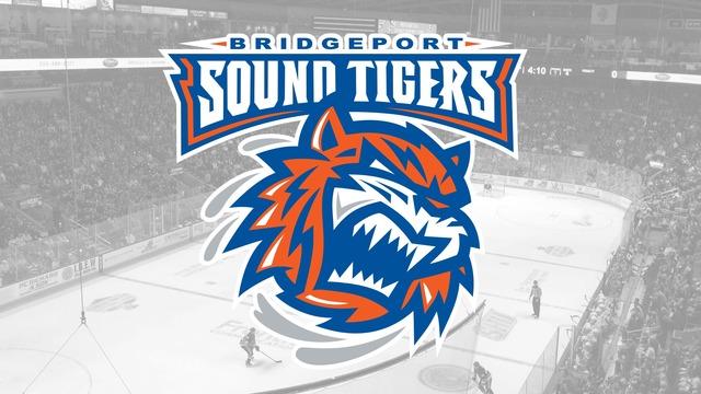 Bridgeport Sound Tigers